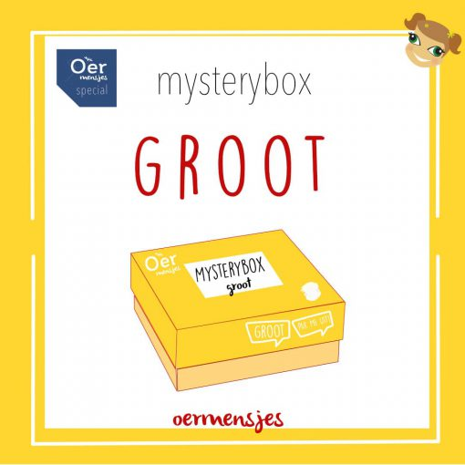 Mysterybox - groot