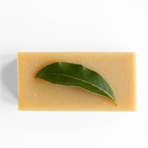 Werfzeep - shampoo (100gr)
