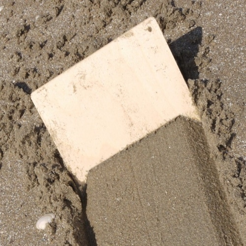 Zandkammen, set van 5 stuks