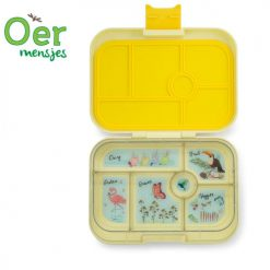 yumbox sunburst yellow 6