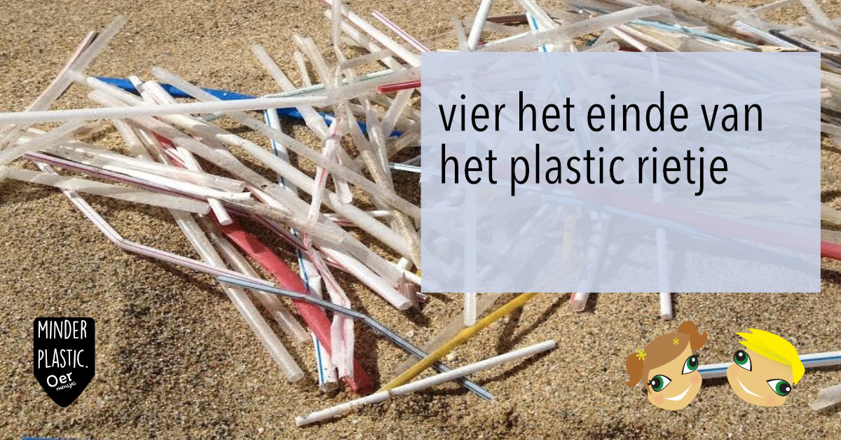 zero waste herbruikbare rietjes