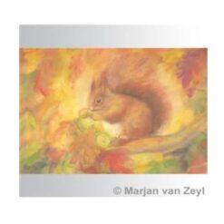Ansichtkaart Eekhoorn (Marjan van Zeyl)