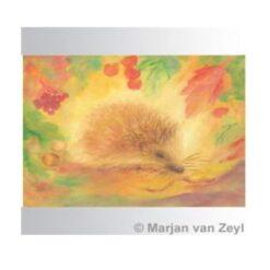 Ansichtkaart Egel (Marjan van Zeyl)