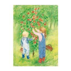 Ansichtkaart Appels plukken (Marjan van Zeyl)