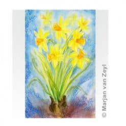 Ansichtkaart Gele narcissen (Marjan van Zeyl)