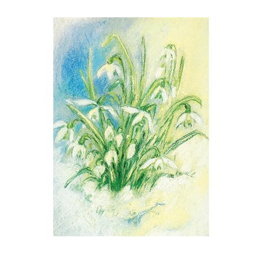 Ansichtkaart Sneeuwklokjes (Marjan van Zeyl)