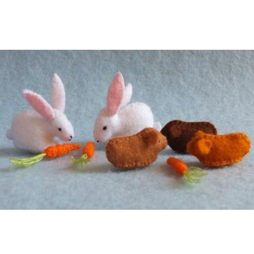 Twee konijnen, cavia's en wortelen - Atelier Pippilotta